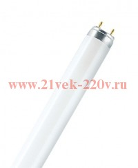 L38W/ 830     PLUS ECO  G13 D26mm 1047mm (тёплый белый 3000 K) - лампа